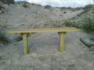 The New Kindred Spirit Bench